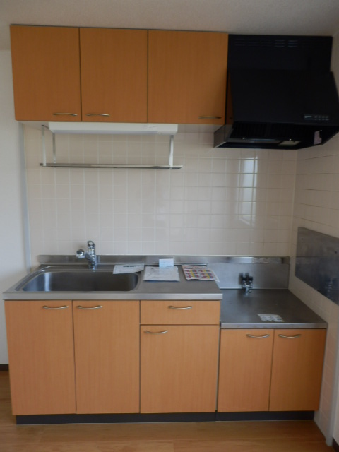 サウスヴィラ 01020号室のキッチン