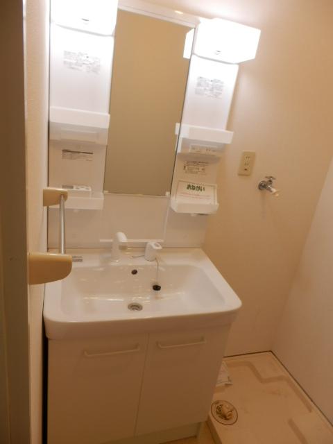 サウスヴィラ 01020号室の洗面所