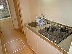 プラシード・E 01030号室のキッチン