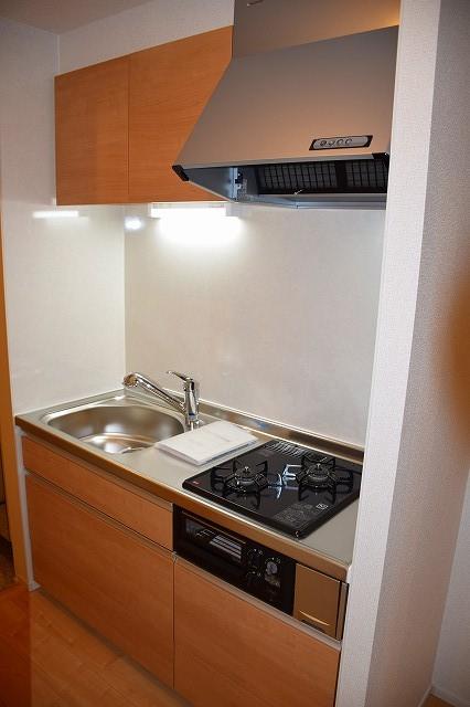 リバーサイド・大江 02050号室のキッチン