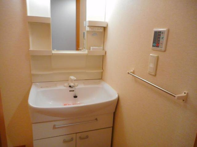 BLUELAGOON WEST 01010号室の洗面所
