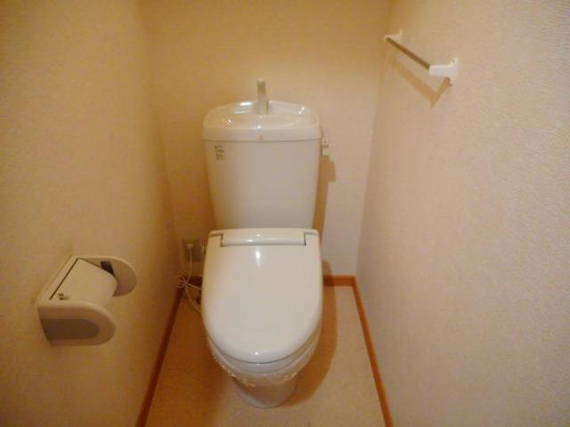 BLUELAGOON WEST 01010号室のトイレ