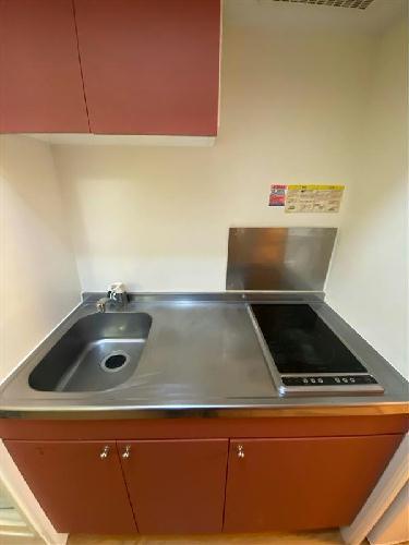 レオパレスサーティーンストーンⅢ 201号室のキッチン