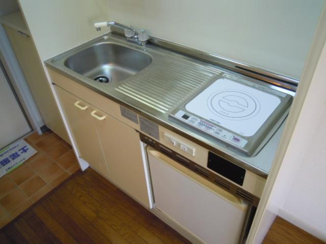 ハウスサンライズ 208号室の風呂
