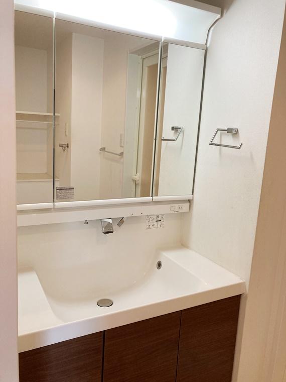 ダイアパレス湘南台Ⅱ 310号室の洗面所