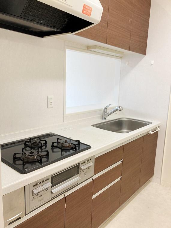 ダイアパレス湘南台Ⅱ 310号室のキッチン