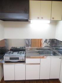 鈴蘭(スズラン)ハイツ 105号室のキッチン