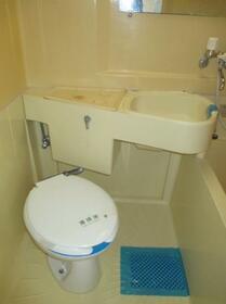 メゾン・ド・ルポ 0202号室のトイレ