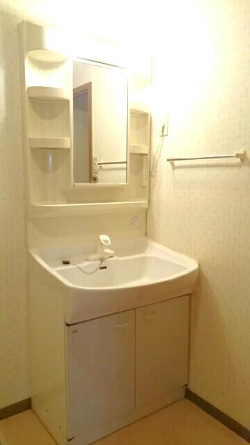 オーブリー 森 01020号室の洗面所