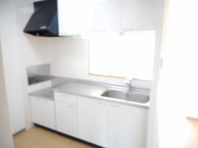 レジデンスM・J A 02010号室のキッチン