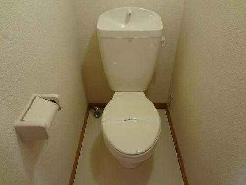 レオパレスフェアリー 114号室のトイレ