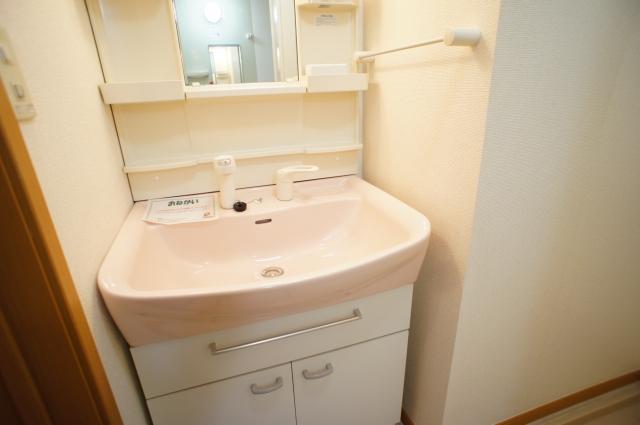 スプリング・ハイムSA 02010号室の洗面所