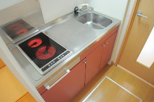 レオネクストオバヅカ 201号室のキッチン