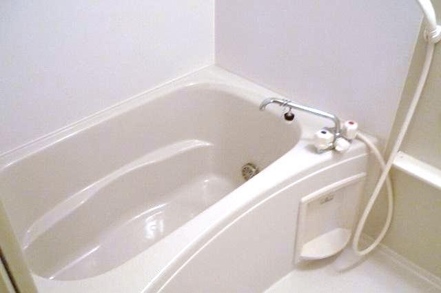 ポポラリタ パラッツオ 02030号室の風呂