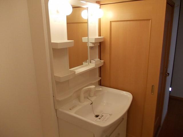 ミルトA 02010号室の洗面所