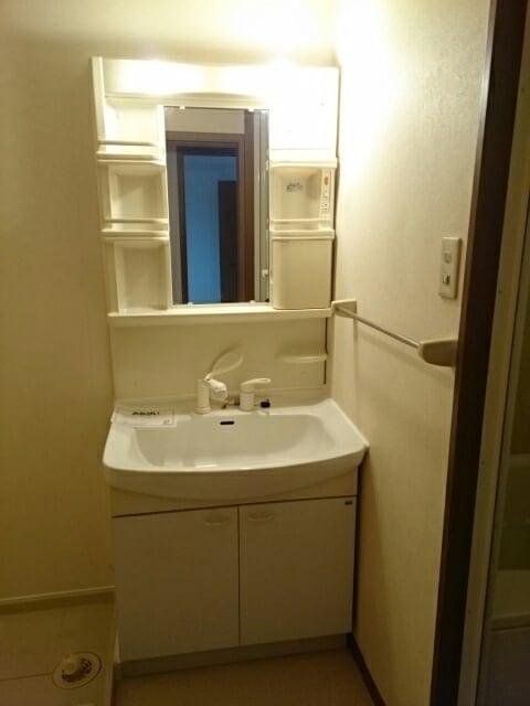 パルテール ヴィラ K 02020号室の洗面所