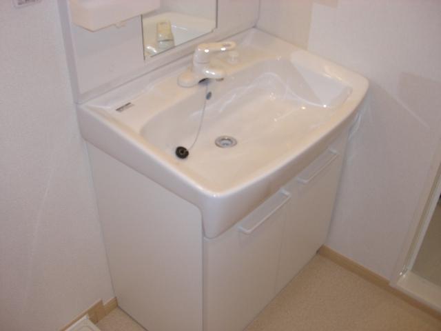 シャンプワールヒルズA棟 02030号室の洗面所