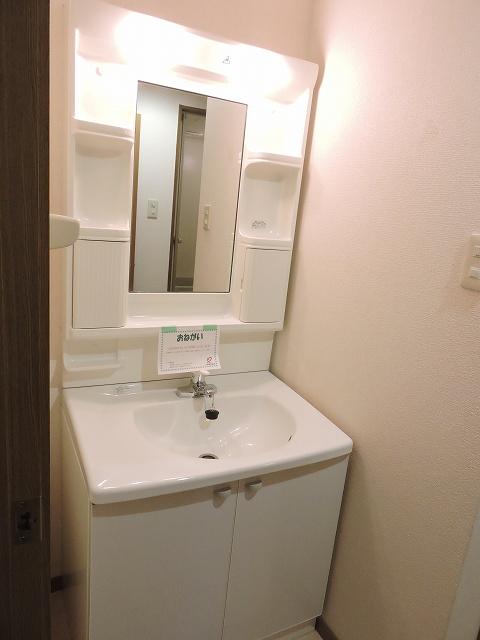 スカイハイツK A 02010号室の洗面所