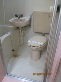 スカイメゾン新松戸 102号室の洗面所