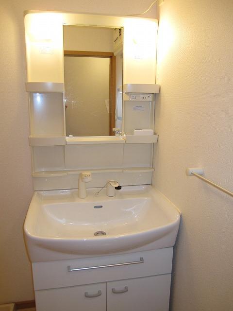 サンリット 02010号室の洗面所