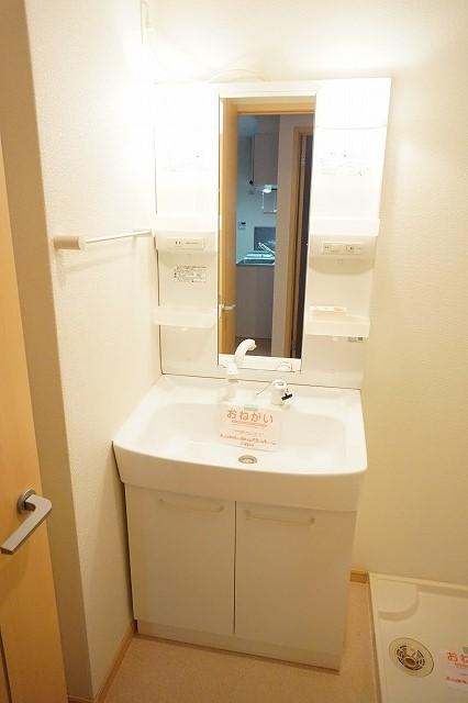 ベル・メゾン鶴市B 01030号室の洗面所