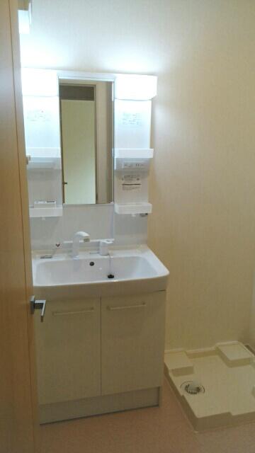 エスポワールA 01020号室の洗面所