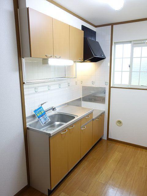 ヴィラ ラルジュ 蘭 02020号室のキッチン