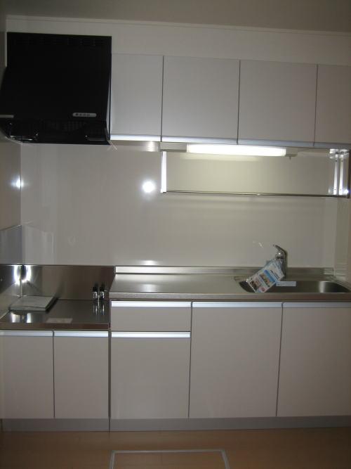 レジデンスM・J A 01010号室のキッチン