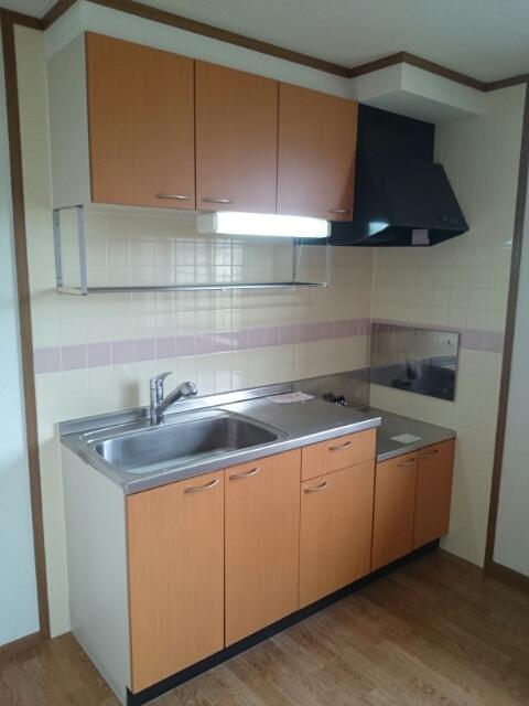 ドゥヴァン レコール B 02010号室のキッチン