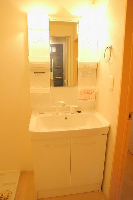 ニューシティめぐみ 01010号室の洗面所