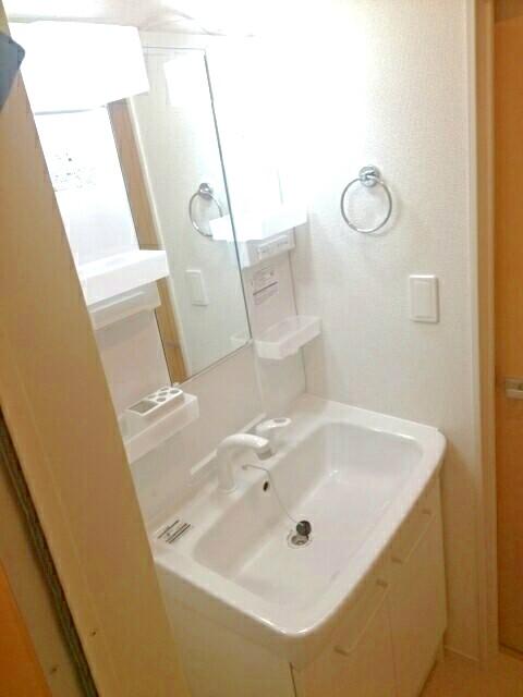 キャッスル B 02010号室の洗面所