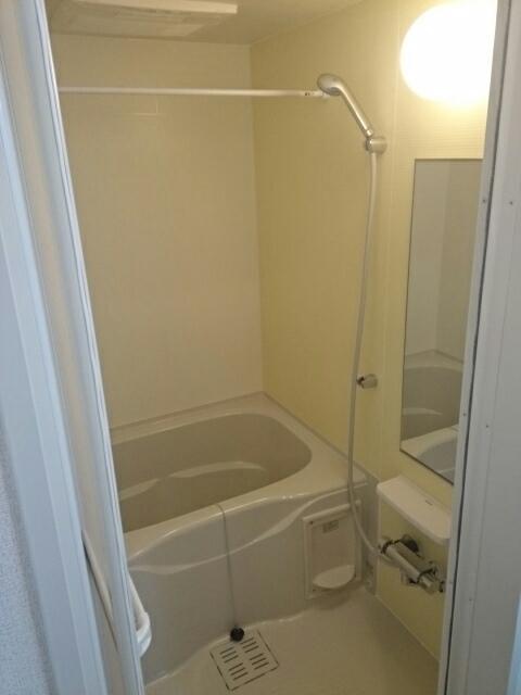 キャッスル B 02010号室の風呂