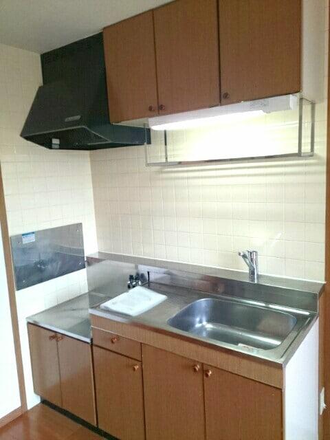 ニューエルディム真時Ⅱ 01020号室のキッチン