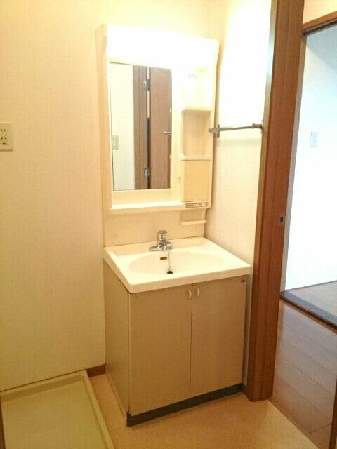 ニューエルディム真時Ⅱ 01020号室の洗面所