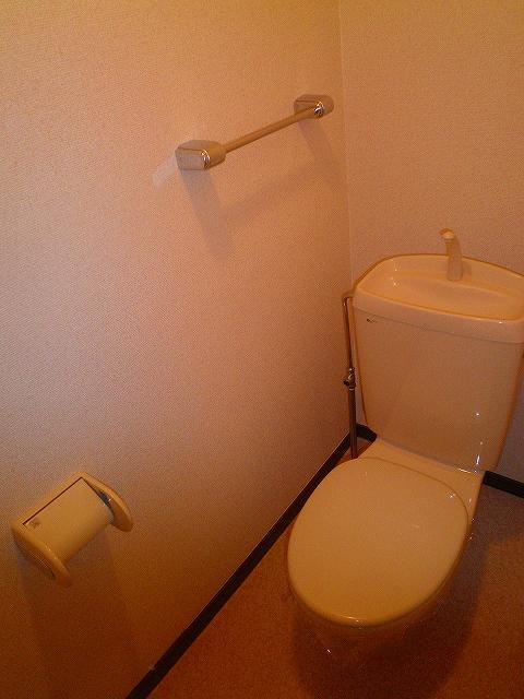 タウニ-21 02030号室のトイレ