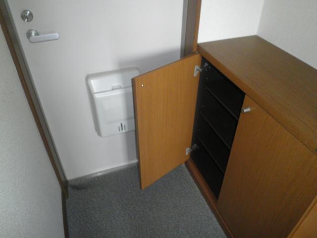 タウニ-21 02030号室の玄関
