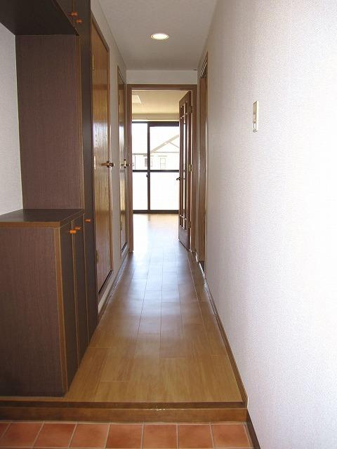 コンフォートハイツ Ⅱ 02040号室の玄関