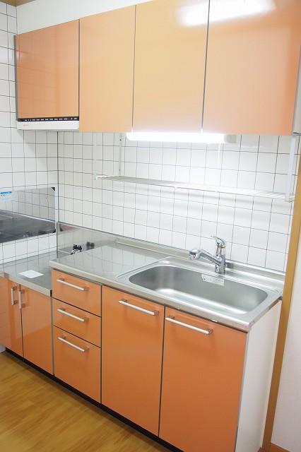 ファイン ブラザー 02010号室のキッチン