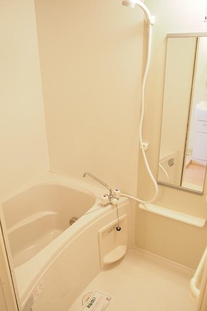 ファイン ブラザー 02010号室の風呂