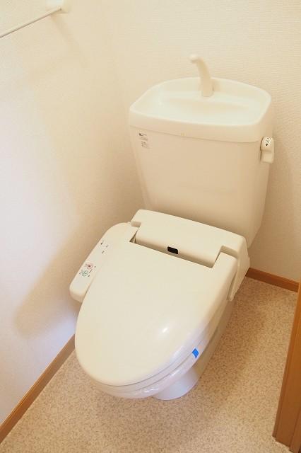 ファイン ブラザー 02010号室のトイレ
