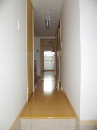 カーサ カトルセM 01040号室の玄関