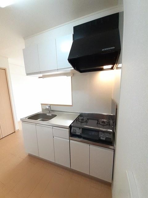 シー・エレガンテ Ⅱ 02020号室のキッチン