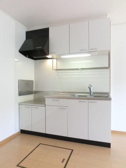 ウィン・アイランドB棟 01020号室のキッチン