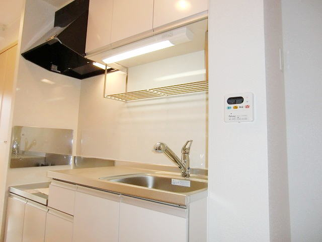 サンブリ-ゼ 03030号室の洗面所