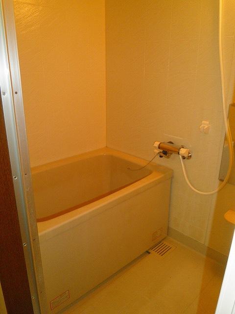 アドバンスB 02010号室の風呂