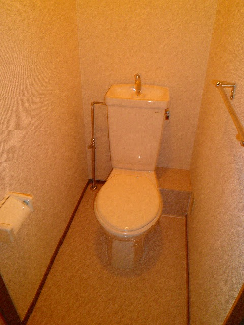 アドバンスB 02010号室のトイレ