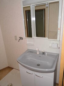 ハイリスベーネ池下 G-2号室の洗面所