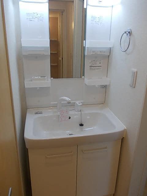 アルモニー印西Ⅱ 01010号室の洗面所