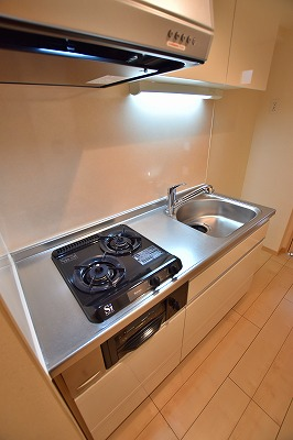 エム 02010号室のキッチン