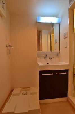 エム 02010号室の洗面所